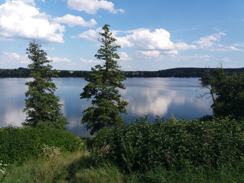 Pszczew jezioro Proboszczowskie