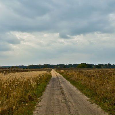 Droga między łąkami do Domu pod Lipą, fot. Ania Gołębiewska