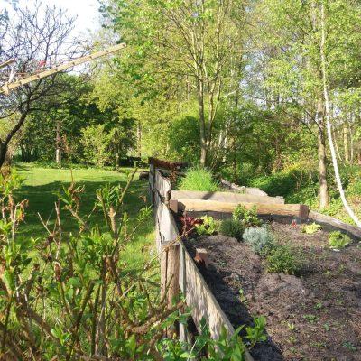 ogródek z warzywami i przyprawami