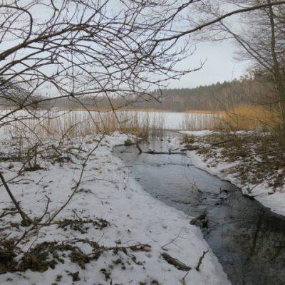 Zima - ujście strumienia, fot. EBK