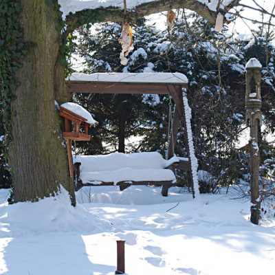 huśtawka w śniegu