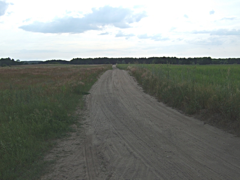kierunek Dom pod Lipa - między łąkami, a dalej przez las