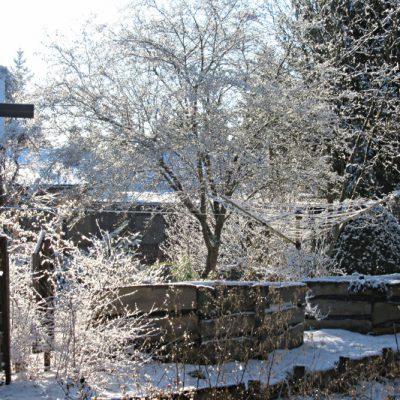 ogród w śniegu, fot. Szymon