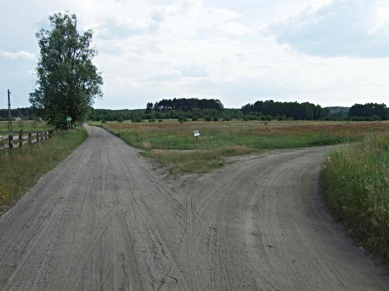 rozwidlenie polnych dróg za wsią Silna