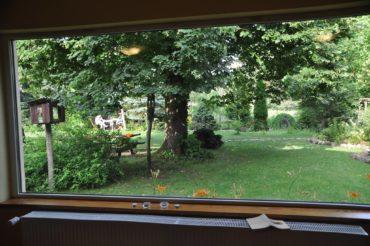 Lato z Przemianą