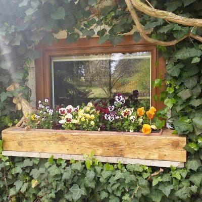 okno kuchenne fot. Ewa Łątka